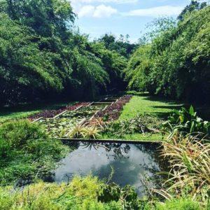 Sri Lanca i giardini Bawa